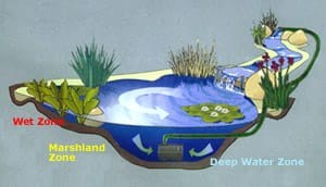 Pond liners for pond construction we sell budget pond for Minimum depth for koi pond